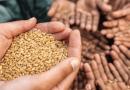 تقرير الأمن الغذائى العالمي 2020: توقعات بـمعاناة 132 مليون شخص من الجوع بسبب كورونا